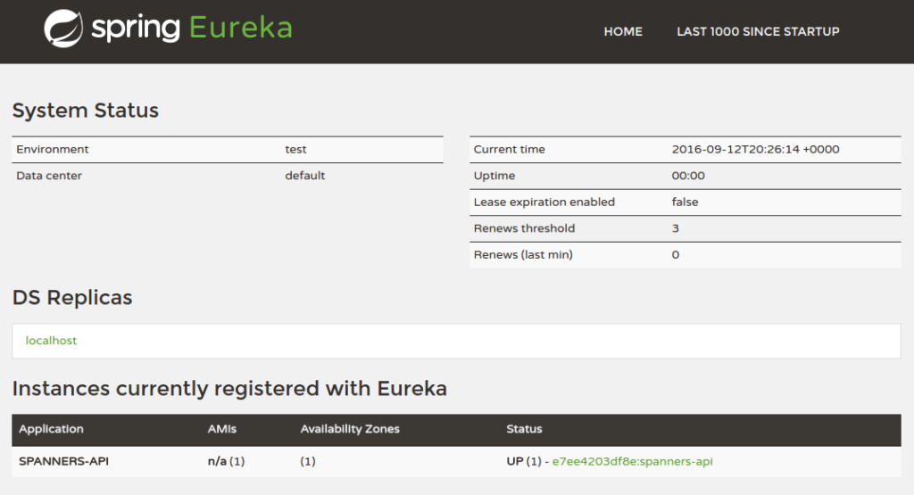 spanners-api registered with Eureka